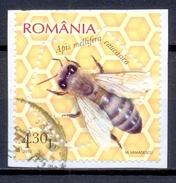 ROEMENIE  (COE 636)