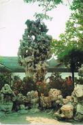 24436. Postal SHANGHAI (China), Jardines Chinos - China