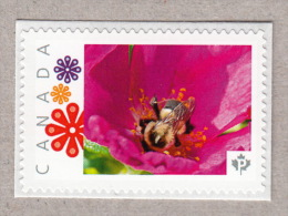 BEE ON WILD ROSE FLOWER. Picture Postage MNH Stamp Canada 2016 [p16/03be7/1]