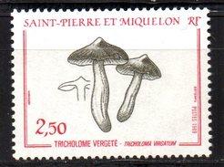 SPM Saint Pierre Et Miquelon  N° 497 Neuf  XX MNH  Luxe  Cote Y&T  1,25  €uro - St.Pierre & Miquelon