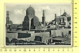 CAIRO: Mamelouk Tombs And Citadel - Cairo