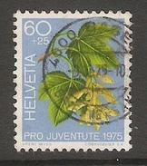 004473 Switzerland Pro Juventute 1975 60c FU - Pro Juventute