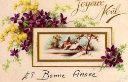 Fantaisie De Noel Avec Violettes - Autres