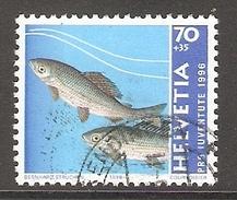 004503 Switzerland Pro Juventute 1996 70c FU - Pro Juventute