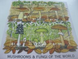 Nevis-Mushrooms - Champignons