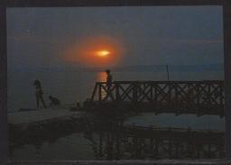 HUNGARY - 1988.Postal Stationery Postcard - Greeting From Lake Balafon / Sunset MNH!!! Cat.No.577/006.
