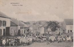 BELGIQUE - MESSANCY - TROUPEAU DU VILLAGE - BELLE CARTE - Messancy