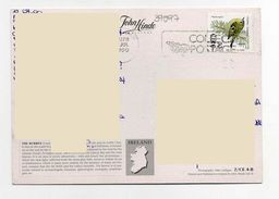 2000 - Eire Ireland Irlanda - Sotia Postale - Uccello Bird - Collect Postage - The Burren - 1949-... Republic Of Ireland