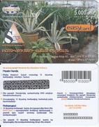 ARMENIA - SSSS, ArmenTel Prepaid Card 5000 AMD, Tirage 5000, Exp.date 30/10/06, Sample - Armenia