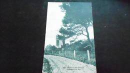 17ANGOULINSN° DE CASIER A4 399DETAIL RECTO VERSO DES PHOTOSNON CIRCULE - Angoulins