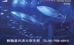 Télécarte Japon * REQUIN * HAIFISCH * SHARK * HAAI * VIS (208) BALEINE * WHALE * Phonecard Japan * FISH * TELEFONKARTE - Fish