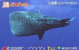 Télécarte Japon * REQUIN * HAIFISCH * SHARK * HAAI * VIS (220) BALEINE * WHALE * Phonecard Japan * FISH * TELEFONKARTE - Fish