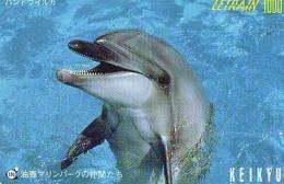 Télécarte Japon * DAUPHIN * DOLPHIN (946)  Japan () Phonecard * DELPHIN * GOLFINO * DOLFIJN * - Dolphins