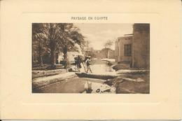 PAYSAGE EN EGYPTE Animée Et Chameau