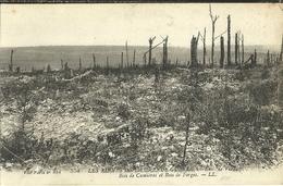 Environs De Verdun Bois De Cumieres Et Bois De Forges - Militaria