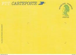 FRANCE  LA POSTE - CARTE POSTE LIBERTE DE GANDON - Yv N° 2484A-CP VERT -  VALEUR PERMANENTE 20GR - NEUF / 1 - Standard- Und TSC-AK (vor 1995)