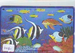 Télécarte Japon * TURTLE  (2001) PHONECARD JAPAN *  * TORTUE *  TELEFONKARTE * SCHILDKRÖTE - Turtles