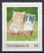 ÖSTERREICH 2016 ** Junge Katzen, Cats - PM Personalized Stamp MNH - Austria