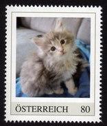 ÖSTERREICH 2015 ** Junge Katze, Cat - PM Personalized Stamp MNH - Austria