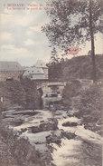 Modave - Vallée Du Hoyoux - La Ferme Et Le Pont De Roiseux (Phototypie Marco Marcovici, Colorisée, 1910)