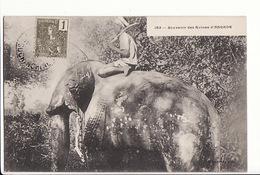 Cambodge - Souvenir Des Ruines D'Angkor - éléphant/ Editions Planté N°153 / Timbre Et Caché Des Colonies 1906 - Camboya