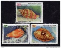 Polynésie N° 503 / 05 XX Faune Marine Coquillages Les 3 Valeurs Sans Charnière TB