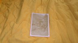 PHOTO ANCIENNE DATE ?. / SCENE FAMILLE POSE DANS LE FOIN ?. .. / DIMENSION 12,5CM X 18 CM. - Persone Anonimi