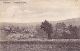 Ferrières - Vue Panoramique (wagons, Edit. Maquet) - Ferrieres
