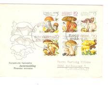 DDR Champignons-Mushrooms Berlin Europaische Spielpilze 1980 PR4747 - Funghi