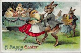 CPA Lapin Bunny Rabbit Position Humaine Habillé Circulé Type Thièle Gaufré - Dressed Animals