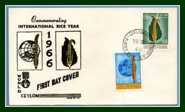 FDC Ceylan International Rice Year 1966 Agriculture Riz