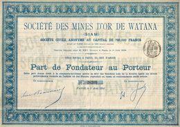 Ensemble De 23 Parts De Fondateur Au Porteur - Société Des Mines D'or De Watana - 1894 - Actions & Titres