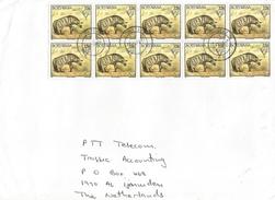 Botswana 1997 Lobatse Aardwolf Carnivore Cat Of Prey Cover - Botswana (1966-...)