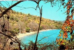 Mayotte La Plage Du Village Touristique De N'Gouja - Mayotte