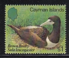 Cayman Islands MNH 1984 Scott #531 $1 Brown Booby Sula Leucogaster - Birds - Iles Caïmans