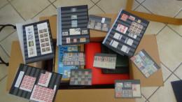 C Gros Carton  Lot Variétés (1800euros) + 2 Bandes ND + Timbres France ** + Obl + Chine + Classeurs + Albums Timbres Obl
