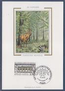 = 10ème Congrès Forestier Mondial Carte Postale 1er Jour Paris 22.9.91 N°2725 Composition Symbolique - Cartoline Maximum