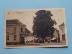 De Vrijheidsboom ( Mouvau ) Anno 19?? ( Zie Foto Details ) !! - Hamme