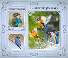 GUINEA REP. 2017 ** Kingfishers Eisvögel Martins-pecheurs S/S - OFFICIAL ISSUE - DH1721