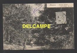 DD / ALGERIE / MASCARA / JARDIN PUBLIC / ANIMÉE / CIRCULÉE EN 1906