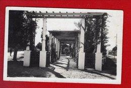 1 Cpa Carte Postale Ancienne - ALGERIE - FEDHALA - ENTREE DU JARDIN PUBLIC