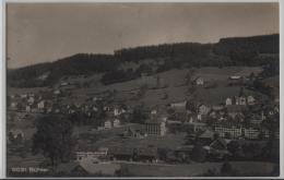 Bühler Appenzell - Generalansicht - Photo: Frei - AR Appenzell Rhodes-Extérieures