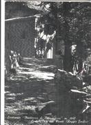 CASTELNUOVO NEI MONTI SANTUARIO DI BISMANTOVA.viaggiata.-1950-FG-704 - Reggio Emilia
