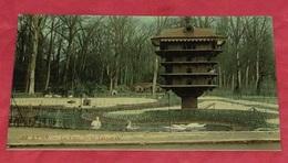 69 - Lyon - Le Parc De La Tête D'or  ::::: Animation - Cygnes - Oiseaux - Zoo  --------- 421 - Lyon