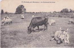 SAINT JUST PRÈS DE MARENNES (Le Communal De Luzac) Manque Un Coin - Francia