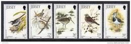 GB JERSEY - 1992 WINTER BIRDS SET (5V) SG 568-572 FINE MNH **