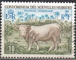 Nouvelles Hebrides 1975 Michel 406 O Cote (2005) 20.00 Euro Taureau Charolais Cachet Rond - Französische Legende
