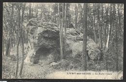 LIVRY Sur SEINE La Roche Cassée (Cosson) Seine & Marne (77) - Autres Communes