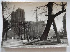 CPSM  - (75) - PARIS EN FLANANT - NOTRE DAME VUE DU SQUARE VIVIANI - ANIMEE - PHOTO CARTE - C1961 - R1700 - France