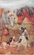 ¤¤  -  Illustrateur   -  Chevaux , Chien De Chasse , Fusil De Chasse    -  ¤¤ - Pferde
